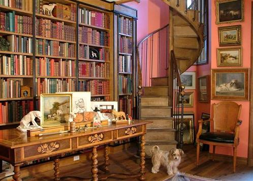 Home-library-with-staircase-and-dog